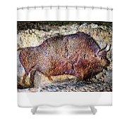 Font De Gaume Bison Shower Curtain
