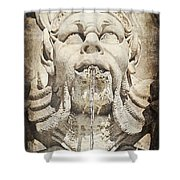 Fontana Del Pantheon 2 Shower Curtain