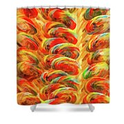 Food - Candy - Lollipops Shower Curtain