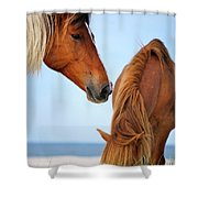 Food Time Shower Curtain