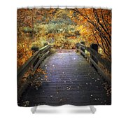 Footbridge Canopy Shower Curtain