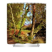 Footpath At The Edge Of Lantys Tarn In The Lake District Cumbria Shower Curtain