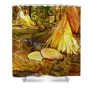 Footpath In National Park Shower Curtain