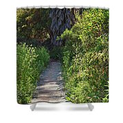 Footpath In Peters Canyon I Shower Curtain