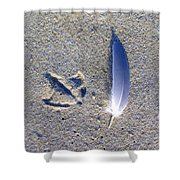 Footprint And Feather Shower Curtain