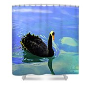 For A Swim Shower Curtain