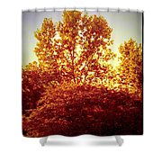 For Simplicities Sake Shower Curtain