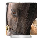 For The Love Of Grain Shower Curtain