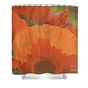 For The Love Of Poppy Shower Curtain