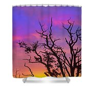 For The Love Of Sunrise  Shower Curtain