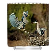 For The Nest, Honey Shower Curtain
