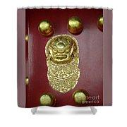 Forbidden City Door Shower Curtain