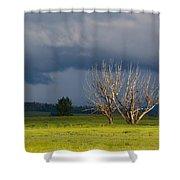 Forbidding Skies Shower Curtain