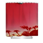 Ford Thunderbird Hood Ornament  Shower Curtain