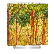 Forest #15 Shower Curtain