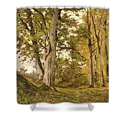 Forest At Fontainebleau Shower Curtain