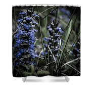 Forest Blues Shower Curtain