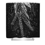 Forest Botanicals In Black And White Shower Curtain