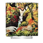 Forest Brook By August Macke Shower Curtain