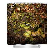 Forest Butterfly Shower Curtain
