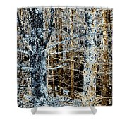 Forest Calm Shower Curtain