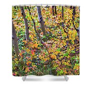 Forest Colors Shower Curtain