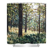 Forest- County Wicklow - Ireland Shower Curtain