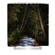Forest Creek Shower Curtain