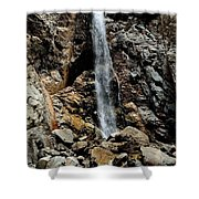 Forest Falls, Ca Shower Curtain