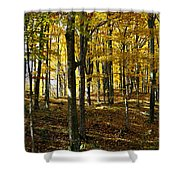 Forest Floor One Shower Curtain
