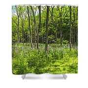 Forest Floor Dame's Rocket Shower Curtain
