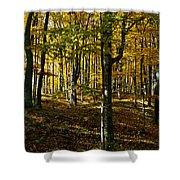 Forest Floor Two Shower Curtain