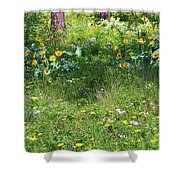 Forest Flowers Landscape Shower Curtain