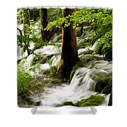 Forest Flows Shower Curtain
