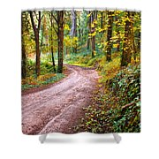 Forest Footpath Shower Curtain by Carlos Caetano
