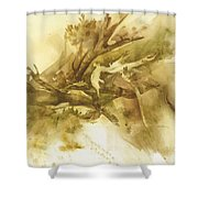 Forest From Above Shower Curtain