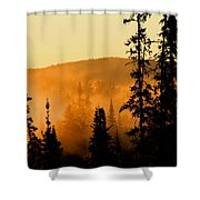 Forest Glow Shower Curtain