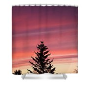 Forest Grove Sunset Shower Curtain