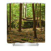 Forest Guardian Shower Curtain