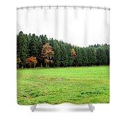 Forest In Bavaria Shower Curtain