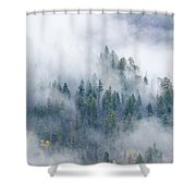 Forest In The Clouds Shower Curtain