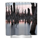 Forest In The Water Shower Curtain