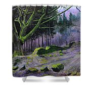 Forest In Wales Shower Curtain