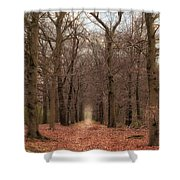 Forest Lane Near Maarsbergen Shower Curtain