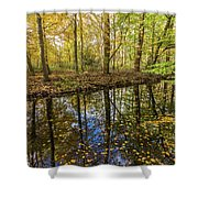 Forest Leaf Reflection Shower Curtain