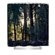 Forest Magic 8 Shower Curtain
