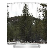 Forest Mountain Redux Shower Curtain