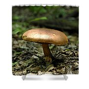 Forest Mushroom Shower Curtain