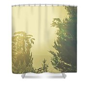 Forest Mysteria Shower Curtain