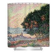 Forest Near St Tropez Shower Curtain
